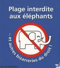 les énigmes de Martin du 4 Avril trouvées par Ajonc et 1/2 Gin-To  Plage-interdite-aux-elephants-le-livre-qui-va-decrisper-le-droit-francais