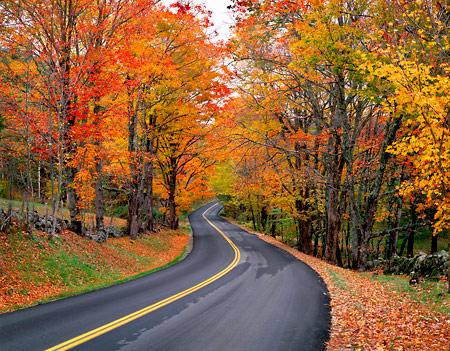 Magija različitih godišnjih doba - Page 2 Autumn_blog2