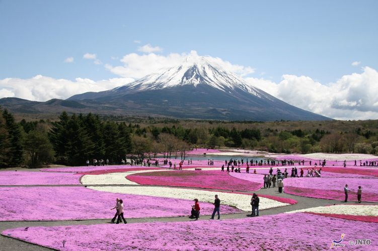 Curiosidades sobre o Monte Fuji 130201_motosuko