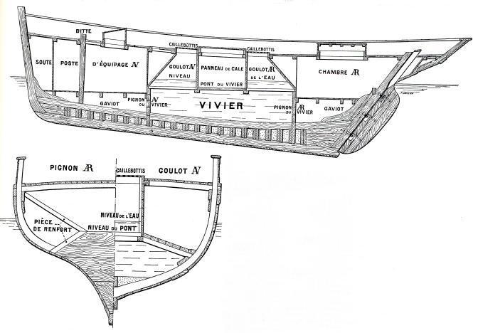 Cotre langoustier (Plan Musée Concarneau 1/25°)  par Yoann gui - Page 3 Coupe1