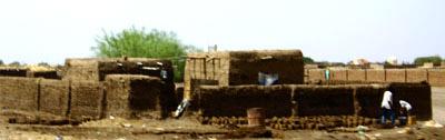 Un sphinx dans le désert 195_9588