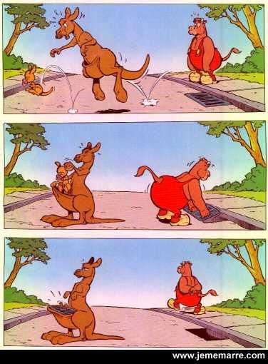 دوال شوية صور هتموتك من الضحك فمسك نفسك(الجزه التانى) Kangourou_voleur