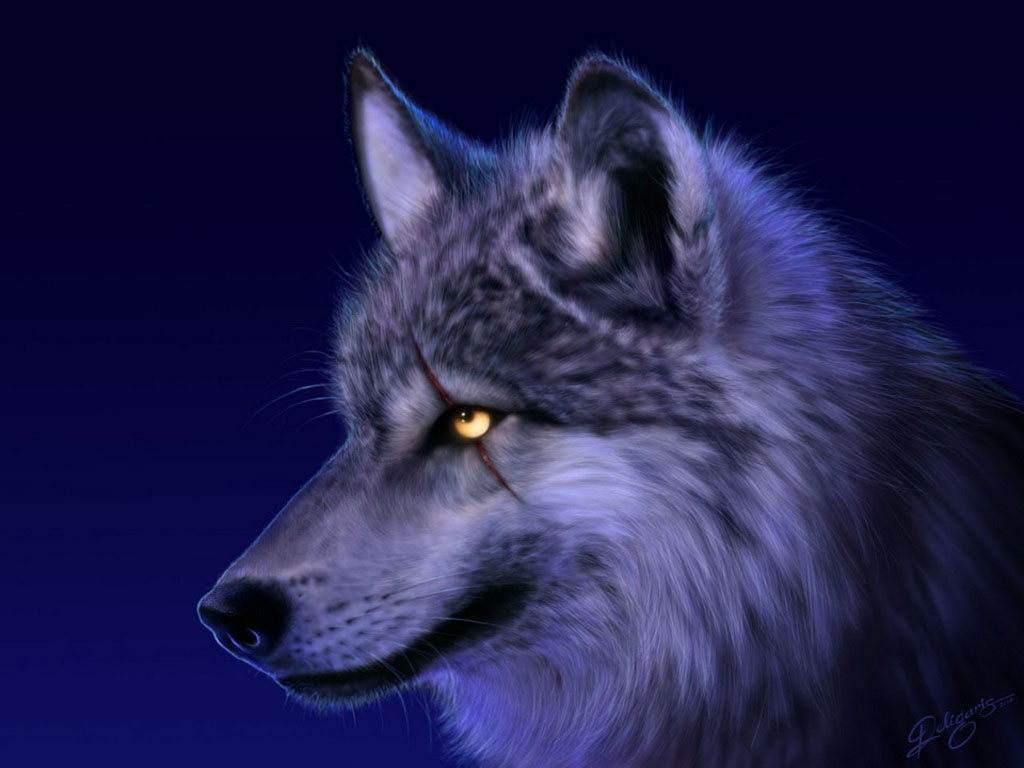 Wolves of the Skryer Forest 9_wolf