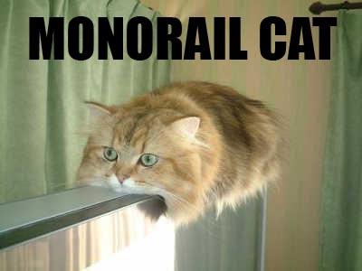 Ces images qui vous ont plu - Page 2 Monorail-cat