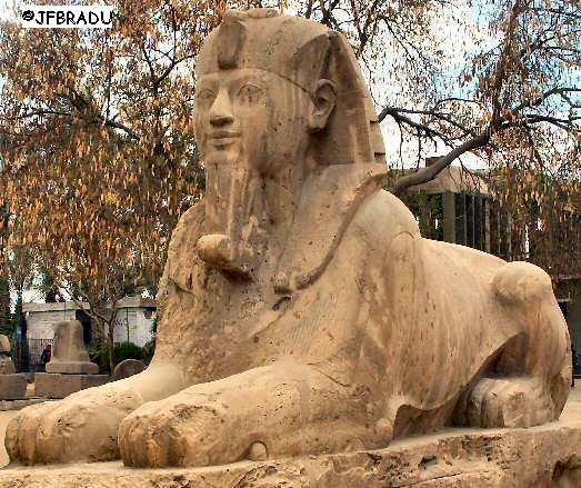 Nith Haiah le prototype d'Hermes,le protecteur du CVIM Sphinx-memphis