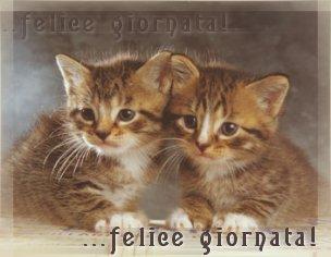 BUON DICEMBRE Felice_giornata_2