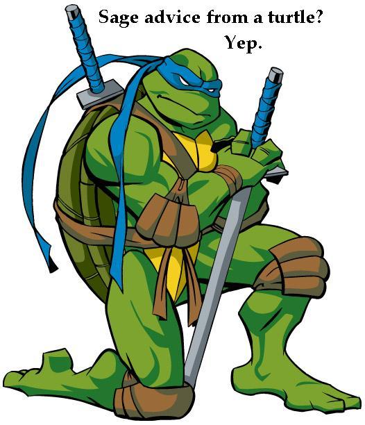 صور انمي سلاحف النينجا Leonardo
