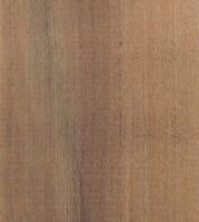besoin aide identification bois - Page 2 Sorbier