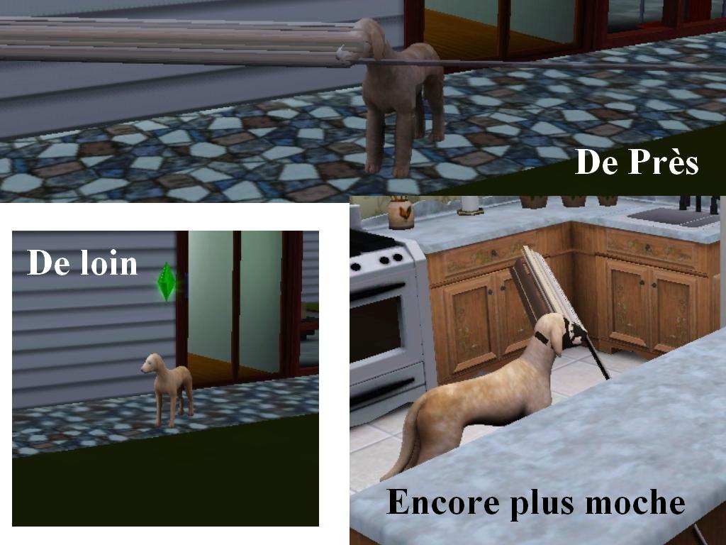 [Mp - 09/10/2013] [sims3]déformation des animaux.[En pause] BugChien
