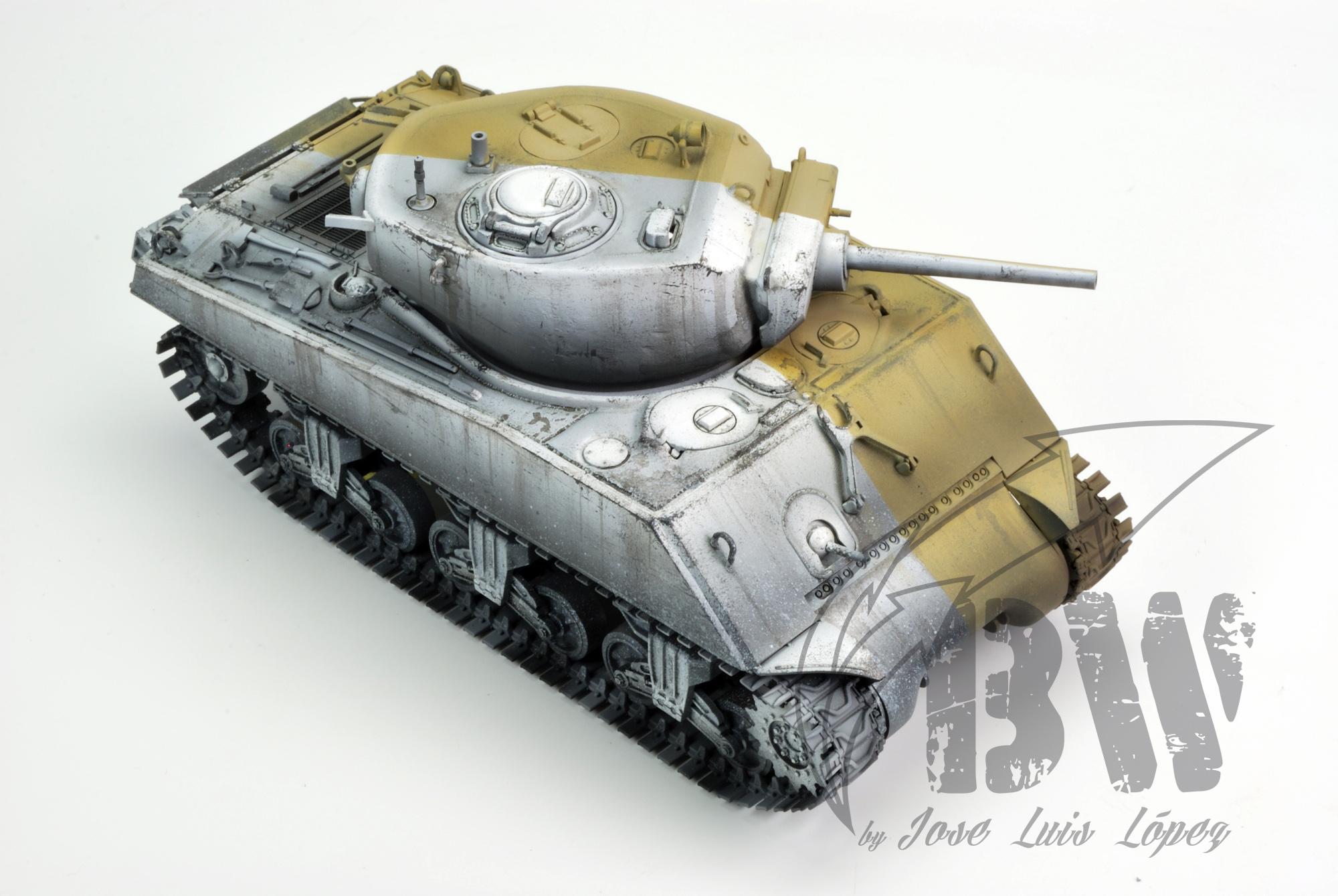 """Техника Black&White ( а если по русски """" Черно белая"""") Sherman-BW_YS_21"""