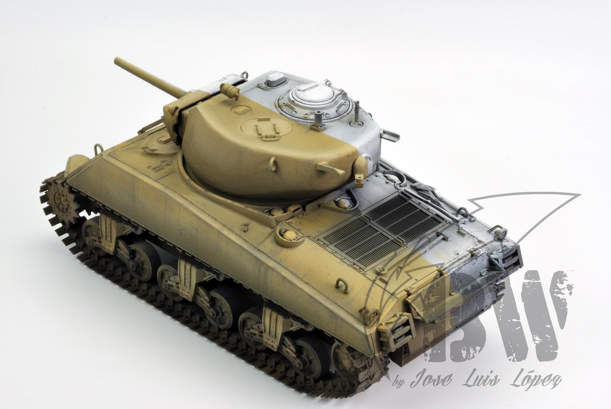"""Техника Black&White ( а если по русски """" Черно белая"""") Sherman-BW_YS_4"""