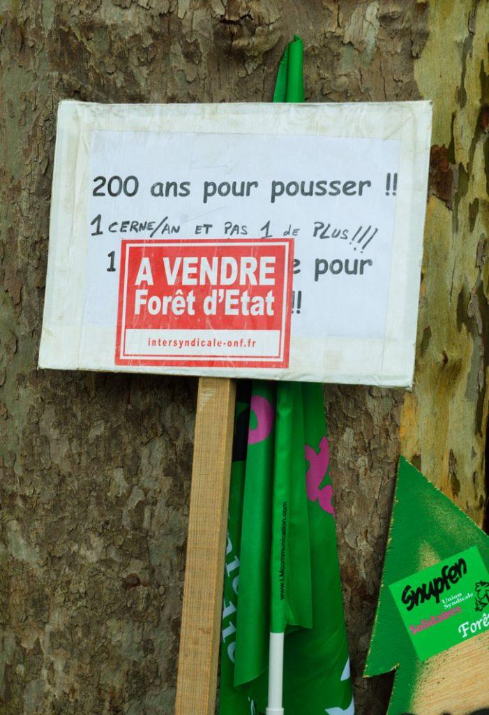 Aux arbres citoyens ! Aidez les forestiers à défendre vos forêts Manifestation-ONF-BB-8-701x1024