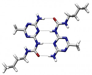 Proteins: how they provide striking evidence of design 740px-Hydrogen_Bond_Quadruple_AngewChemIntEd_1998_v37_p75-300x243