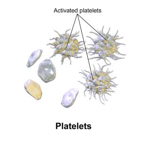 The Remarkable Language of Cells BruceBlaus-WIK-diagram-activated-platelets-600px-Blausen_0740_Platelets-300x300