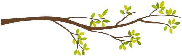 Creación de barras separadoras para poner en los post Treebranch