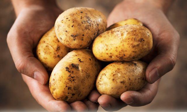 فوائد البطاطا Potatoes0