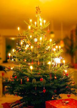 РОЖДЕСТВЕНСКАЯ МИШУРА - Страница 2 New_year_tree