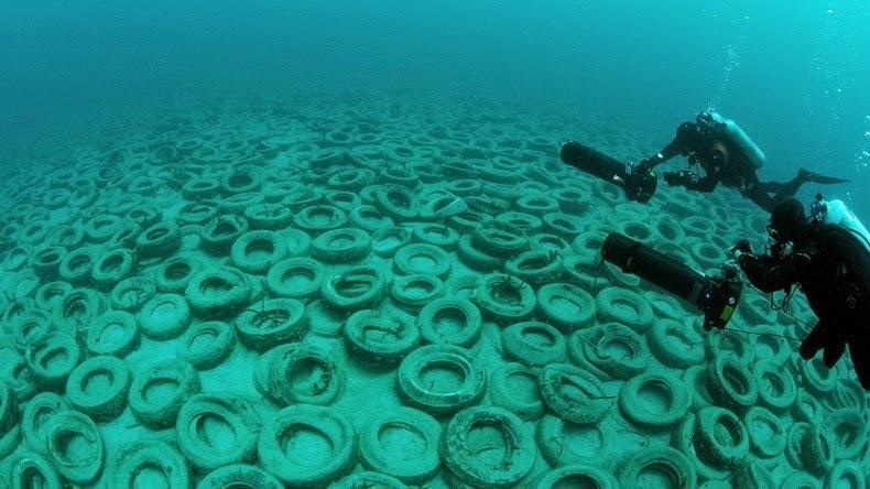 El fracaso del arrecife artificial de neumáticos 8FD