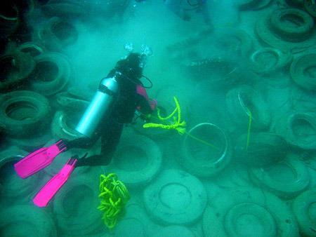 El fracaso del arrecife artificial de neumáticos 050