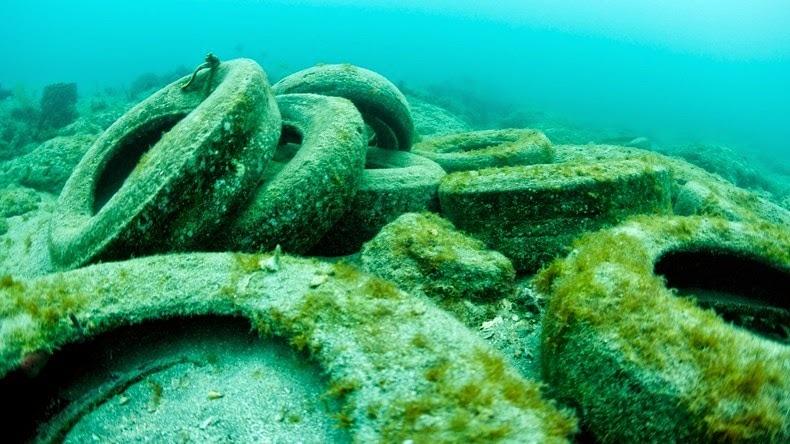 El fracaso del arrecife artificial de neumáticos 314