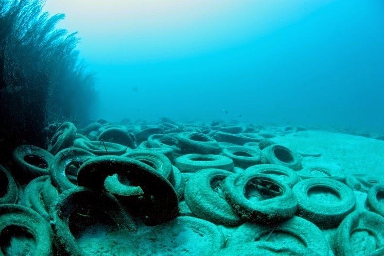 El fracaso del arrecife artificial de neumáticos D84