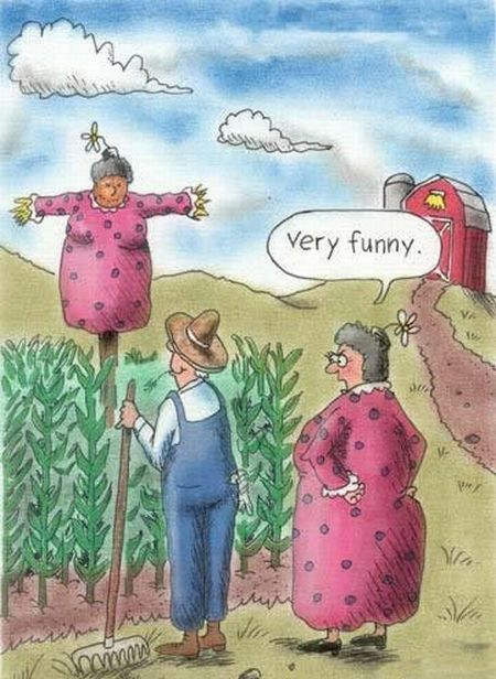 Un poco de humor gráfico...  C0A