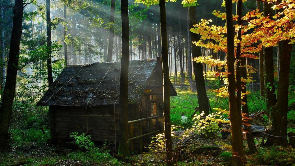 Casas reales que parecen de película E1C