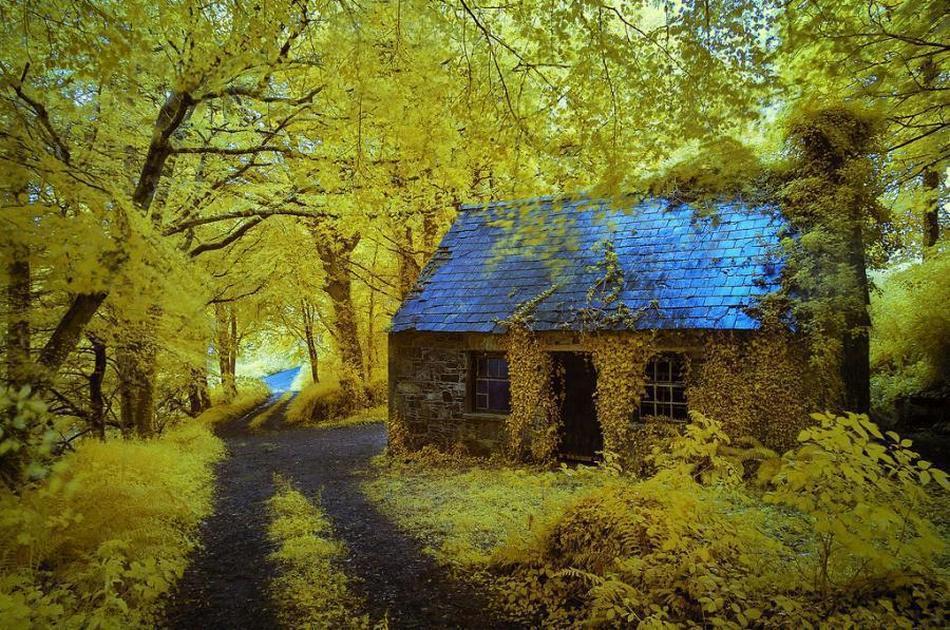 Casas reales que parecen de película 1F2