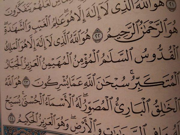 فضائل سور القرآن الكريم 20131106_070648