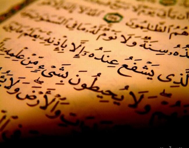 كيف تَتَلَقَّى رِسَالاتِ القرآن؟ Quran-2154