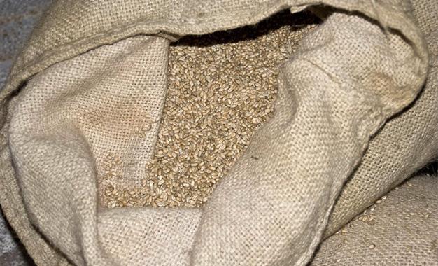 La Tunisie se procure 75.000 tonnes de blé de mouture Sac-de-ble