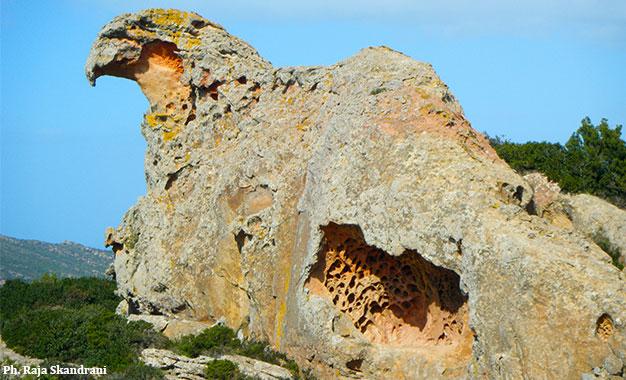Cap Bon : Un piton rocheux appelé Bec de l'Aigle Bec-Aigle