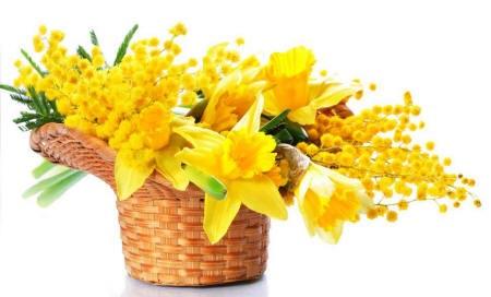 Поздравляем с Днем Рождения Юлию (yulya1103) Narciss49_small
