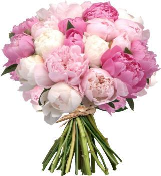 Поздравляем с Днем рождения Елену (Еленка82) Bouquet_50_small