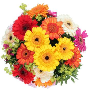 Поздравляем с Днем Рождения Анастасию (Snail) Bouquet_70_small