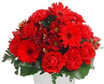 Поздравляем с Днем рождения Анну (Нюнечек)! Buket-170_small