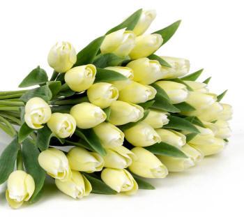 Поздравляем с Днем Рождения Наталью (Наталочка) Buket-93_small