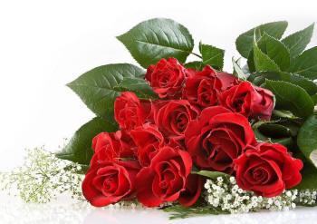 Поздравляем с Днем Рождения Светлану (5zvezda) Krasota2_58_small