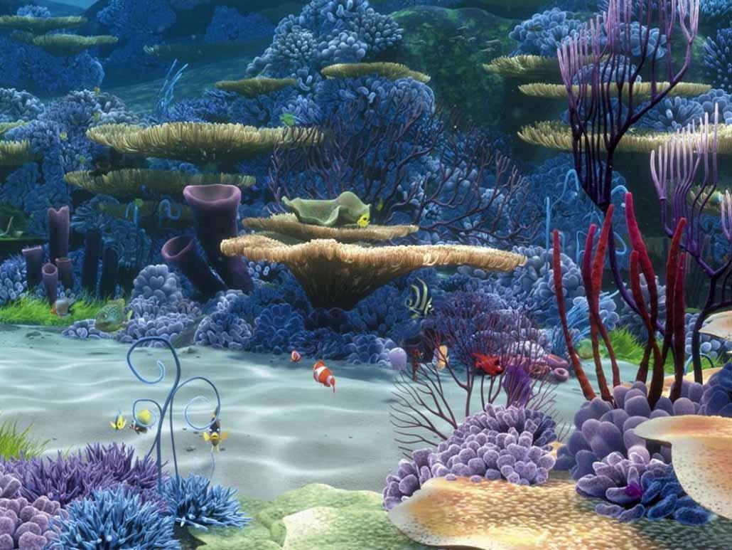 кораллы Korally_rif_kartinki_foto_03