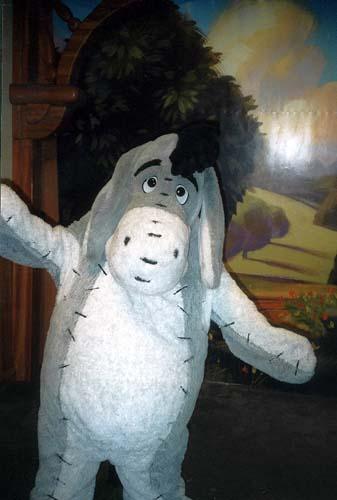 visite du Disney world magic Kingdom Meeeyore