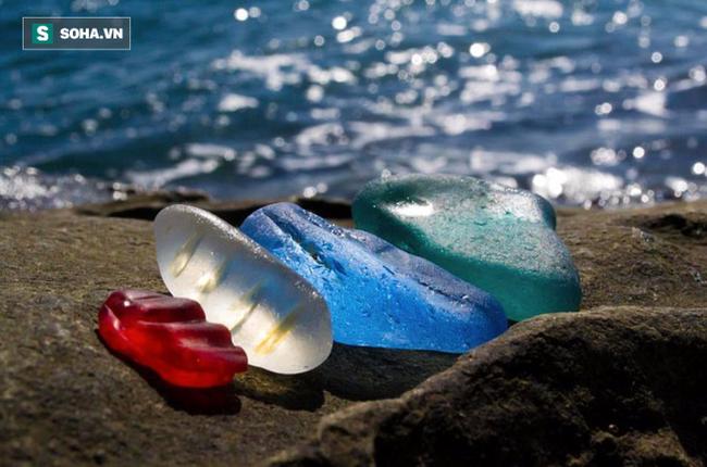 Hàng triệu mảnh thủy tinh bị vứt xuống biển, 10 năm sau điều không ai ngờ đến đã xảy ra Photo-1-1486459114560