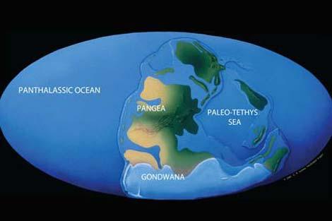 Lịch sử Trái đất qua hình ảnh (Phần I) Images2063153_10