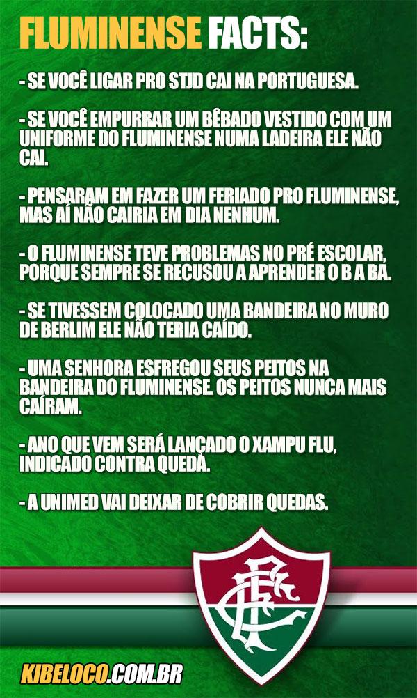 Brasileirão 2013 - Página 7 Flufacts