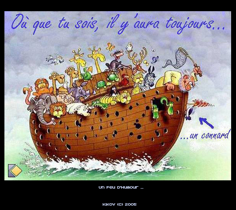 Humour en image - Page 4 Humour_noe