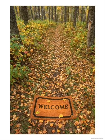 Where Did the Cover Picture Go 542680welcome-mat-on-forest-trail-posters1