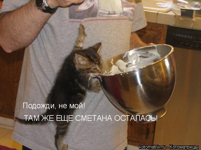 Котоматриця!)))) 6O