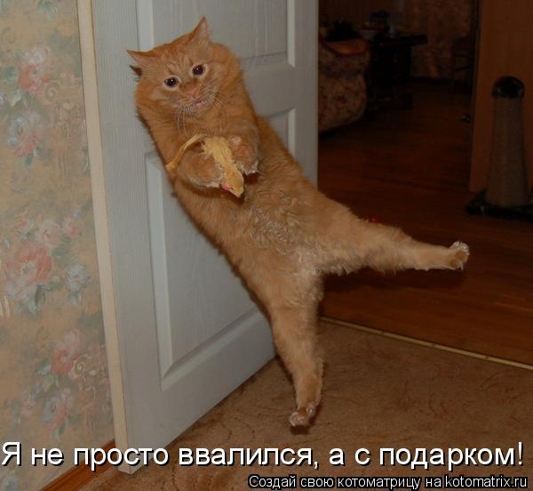 Котоматриця!)))) Ut