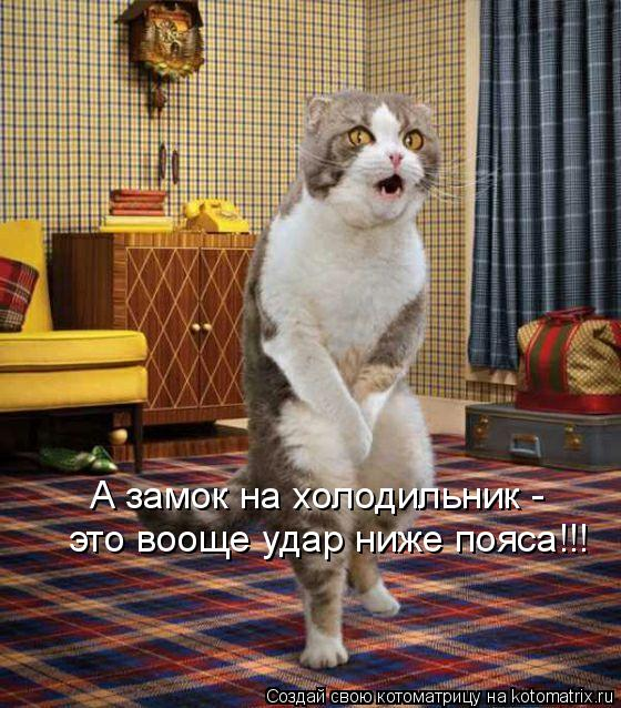 Кошачий юмор - Страница 8 463414