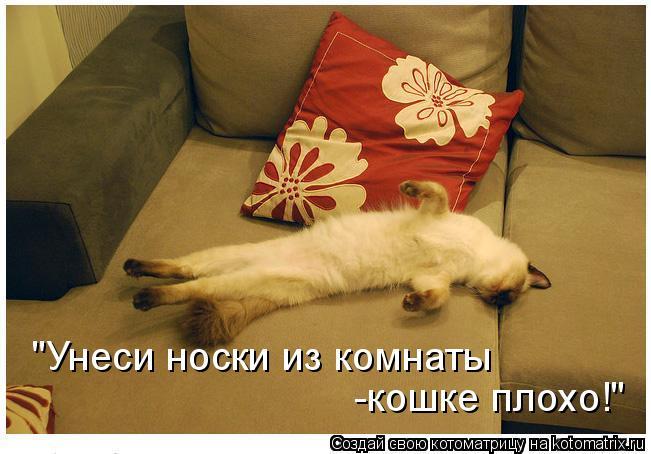 Котоматриця!)))) - Страница 6 660100