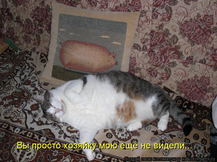 Котоматриця!)))) - Страница 6 673531